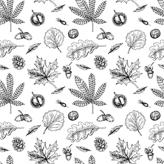 Kastanjes naadloze patroon. kastanjebladeren en vruchten schetsen naadloze achtergrond.