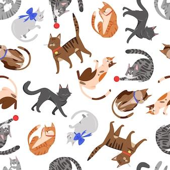 Kat dieren spelen naadloos patroon schattig kitten huisdier van verschillende rassen grappige kitty