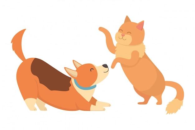 Kat en hond cartoon