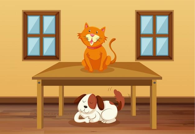 Kat en hond in de kamer