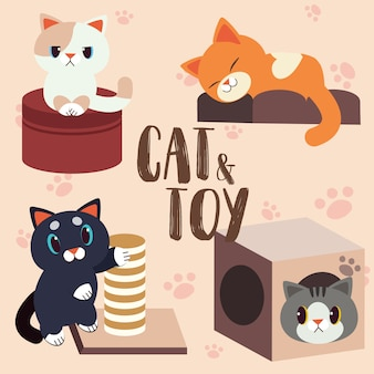 Kat en speelgoed set