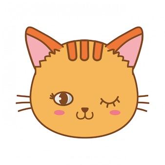 Kat gezicht knipoog oog