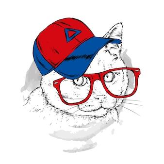 Kat in een pet en glazen