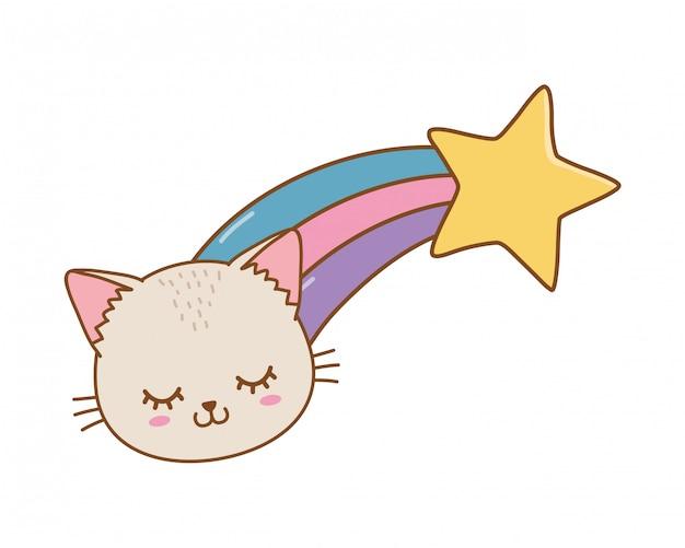 Kat met vallende ster