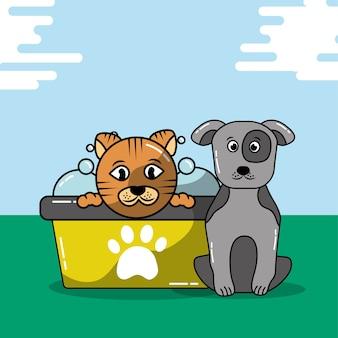 Katten- en hondenverzorging badkuip shampoo