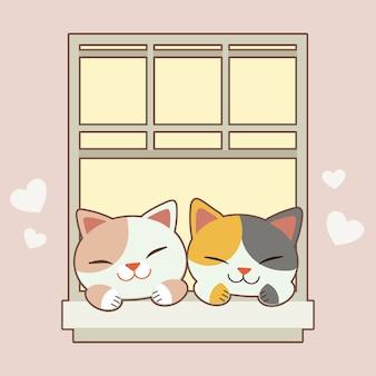 Katten glimlachen bij het raam