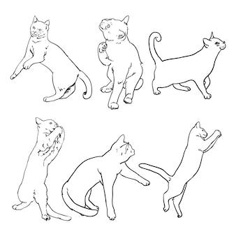 Katten schetsen vector pack