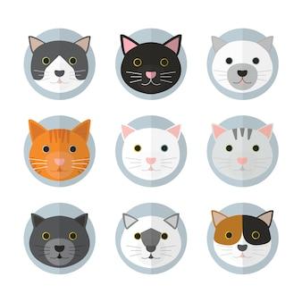 Kattengezichten in veel rassen. met blauwe cirkellagen en effen achtergrond.