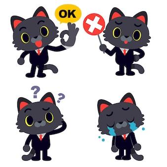 Kattenkarakter in pak