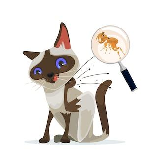 Kattenkarakter krabt vlooien weg. vectorillustratie platte cartoon