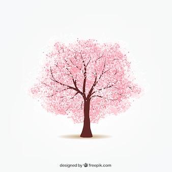 Kerseboom