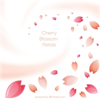 Kersenbloesem bloemblaadjes achtergrond