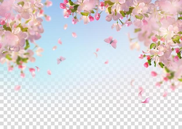 Kersenbloesem en vliegende bloemblaadjes op de lenteachtergrond