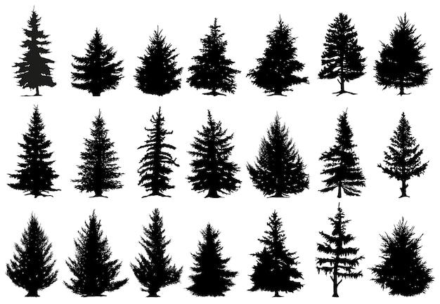 Kerst dennenbomen silhouetten. naaldbos zwart-wit bossen, sparren silhouetten vector iconen set. vuren bos bomen silhouetten. boomhout en dennen, kerstspar, vectorillustratie