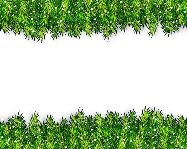 Kerstboomtakken