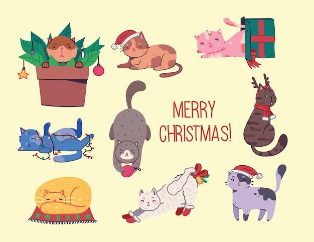 Kerstkatten, merry christmas-illustraties van schattige katten met accessoires zoals gebreide mutsen, truien, sjaals