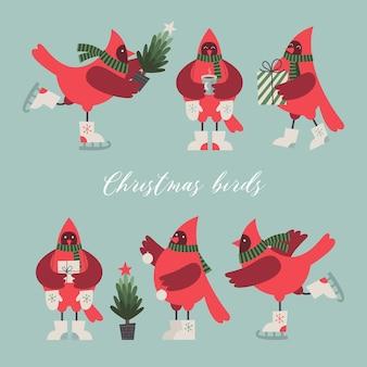 Kerstvogelsvectorverzameling van cartoon rode vogels zes tekenfilmfiguren voor wenskaarten