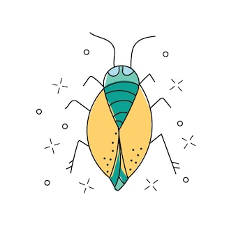 Kever hand getrokken doodle pictogram. insect kever schets vectorillustratie voor print, web, mobiel en infographics geïsoleerd op een witte achtergrond.