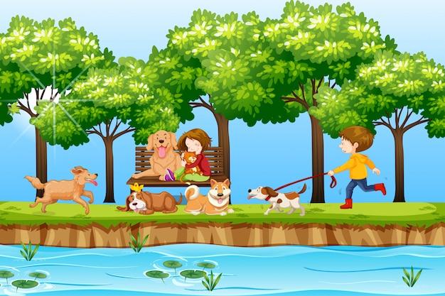 Kinderen en honden in het park