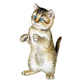 Kitten zit op zijn achterpoten. waterverf. illustratie