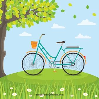 Klassieke fiets in de natuur