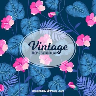 Klassieke tropische achtergrond met vintage stijl