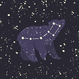 Kleine beer ursa minor. sterrenbeeld.