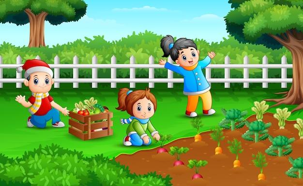 Kleine boeren oogsten de resultaten van hun plantages