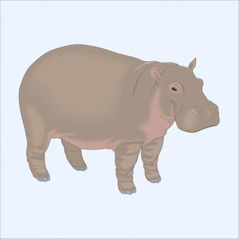 Kleine eenzame nijlpaard