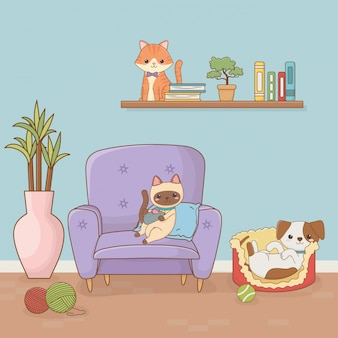 Kleine hond en kat mascottes in de huiskamer