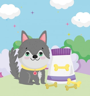 Kleine hond zit met kraag voedsel en botten huisdieren