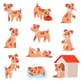 Kleine hondje puppy set