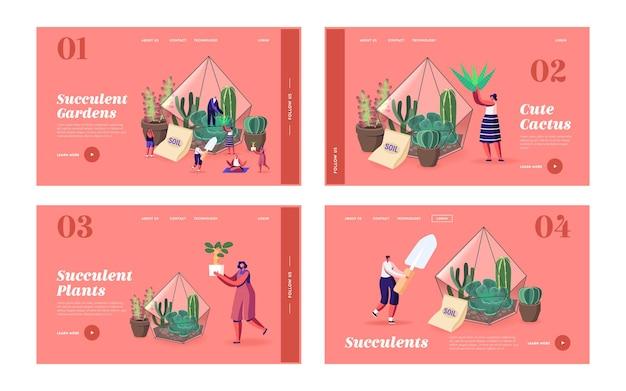 Kleine karakters kweken cactussen en vetplanten in potten bij de sjabloonset voor thuisbestemmingspagina's. tuinieren, mensen die hobby planten en composities van planten maken in terrariumconcept. cartoon vectorillustratie