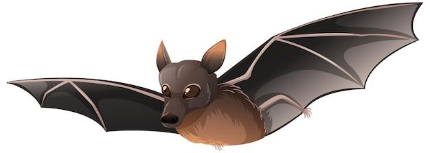 Kleine rode vleermuis in cartoon-stijl op witte achtergrond