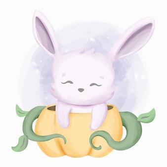 Kleine schattige konijntje en de pompoen