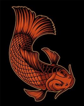 Kleur illustratie van een koikarper op de donkere achtergrond. te gebruiken als element in het ontwerp of als afgewerkte illustratie.
