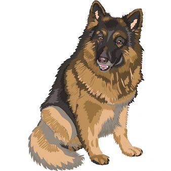 Kleur schets hondenras duitse herder