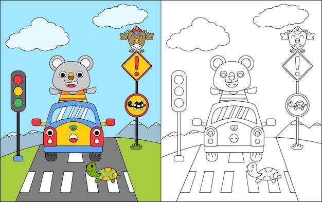 Kleurboek of kleurplaat cartoon beer en auto stoppen bij het zebrakruis