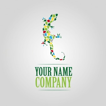 Kleuren gekko logo template