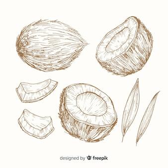 Kleurloze hand getrokken kokosnoot achtergrond