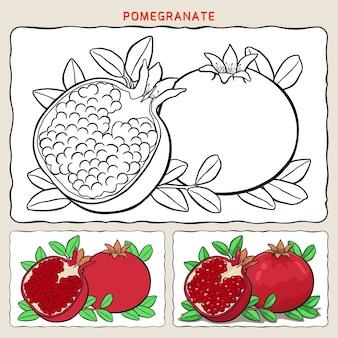 Kleurplaat van granaatappel met twee kleurvoorbeelden