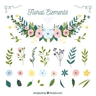 Kleurrijk pak hand getrokken bloemenelementen
