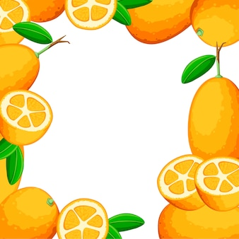 Kleurrijk patroon. exotisch fruit kumquat met groene bladeren. vers fruit . illustratie op witte achtergrond. geheel en gesneden sinaasappelsap kumquat.