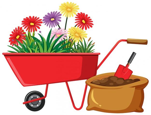 Kleurrijke bloemen en zak geïsoleerde grond
