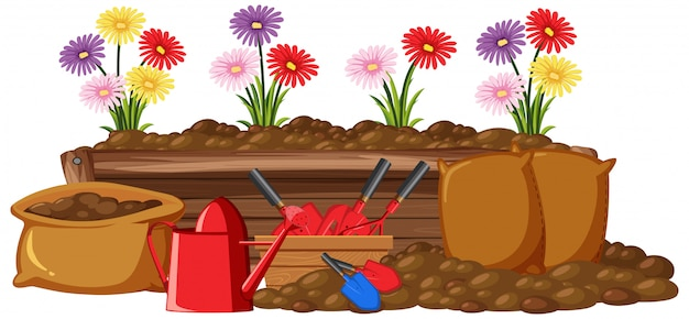 Kleurrijke bloemen in houten kist