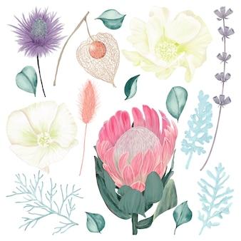 Kleurrijke bloemen set met bladeren