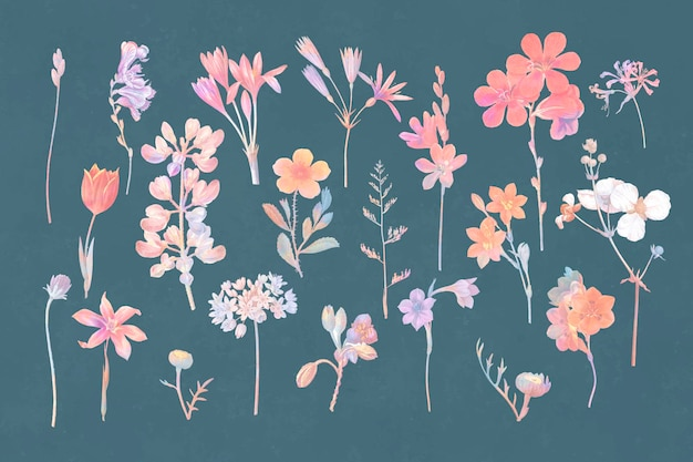 Kleurrijke bloemenset