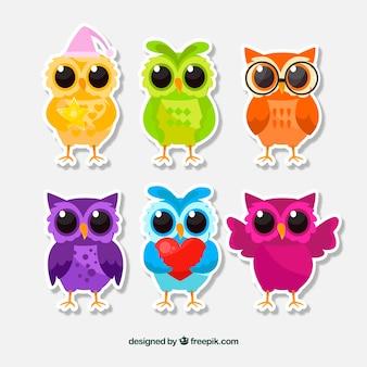 Kleurrijke cartoon uil set