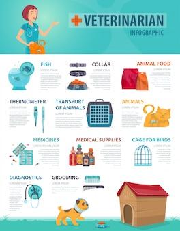 Kleurrijke dierenarts infographic concept