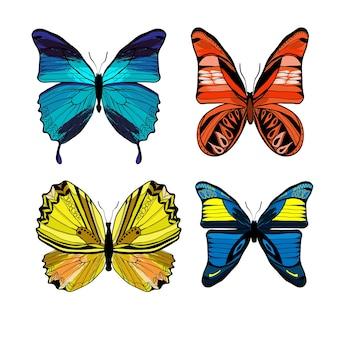 Kleurrijke grafische insecten die met verschillende soorten vlinders op wit worden geplaatst